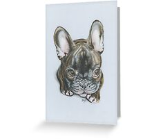 Little Frenchie. Greeting Card