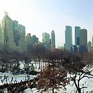Central Park Winter Morning by simtmb