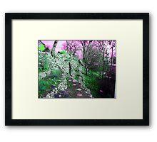 Terraced Garden Fantasy 4 Framed Print
