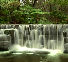 Millards Creek Weir, Ulladulla by Steve Fox