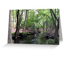 Naturescape 6 Greeting Card