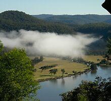 Hawkins Lookout ~ Misty Morning by Rosalie Dale