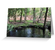 Naturescape 7 Greeting Card