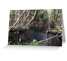 Naturescape 8 Greeting Card