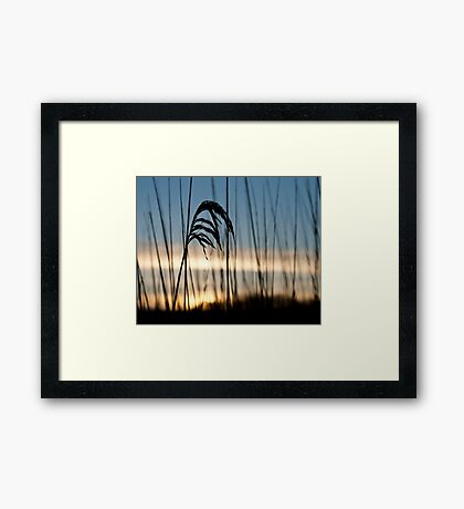 February dawn Framed Print