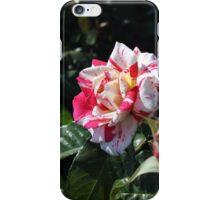 Red & White Rose iPhone Case/Skin