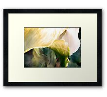 Lily III Framed Print