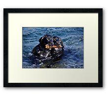 Water Babies Framed Print