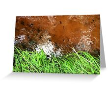 Naturescape 15 Greeting Card