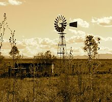 Outback Australia by Tracey Hawkes 'Visual Artist'