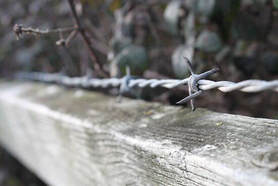 Wire on a fence by Mrpunkfox