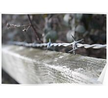 Wire on a fence Poster