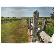 The Good Earth Vineyard Poster