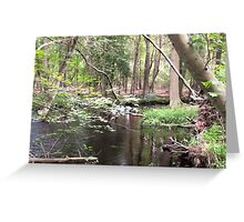 Naturescape 19 Greeting Card