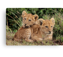 Out of Africa - Lean on Me Canvas Print