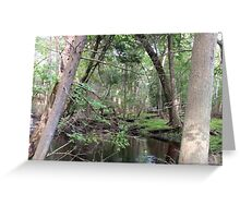 Naturescape 20 Greeting Card