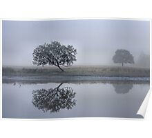 Foggy Reflections - Bedlam Creek NSW Poster