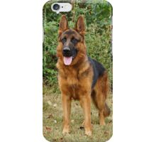 Rocco Watching iPhone Case/Skin