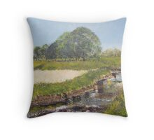 Millenium Walk, Aire Valley, Keighley, West Yorkshire Throw Pillow