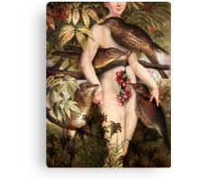 Red fruits Canvas Print