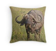 Kenya Cape Buffalo Throw Pillow