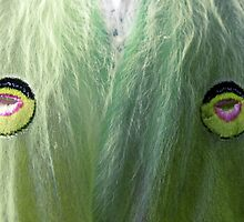 Protection for the Luna Moth by Kate Eller