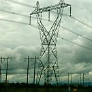 Pylons, Pacific Northwest by RonnieGinnever