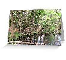 Naturescape 24 Greeting Card