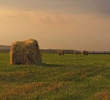 Golden time by VallaV