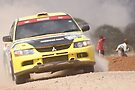 Safari Rally 2011 by Karue