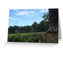 Naturescape 32 Greeting Card