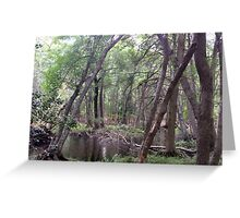Naturescape 35 Greeting Card