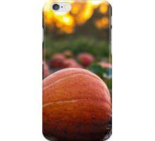 Orange Pumpkin Patch iPhone Case/Skin