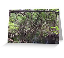 Naturescape 39 Greeting Card