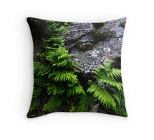 Rock and Ferns Throw Pillow