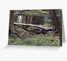 Naturescape 41 Greeting Card