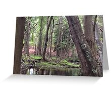 Naturescape 42 Greeting Card
