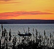 Fathers Day Sunset Over Narragansett Bay - Rhode Island by Jack McCabe