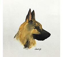 "German Shepherd ""Loyalty and love are not exclusive virtues of human beings"" Photographic Print"
