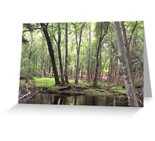 Naturescape 43 Greeting Card