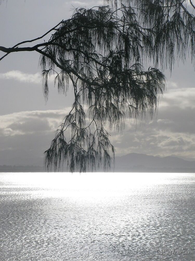 Casuarina 1 by Cathy Martin