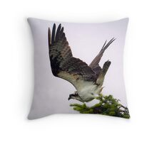 When the Osprey Spots a Fish in the Bay Throw Pillow