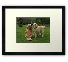 What's Love Got To Do With It? FEATURED PHOTO Framed Print
