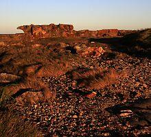 Rock Formation - Culburra Beach by Noel Elliot