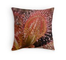 Sparkling Sundew Throw Pillow