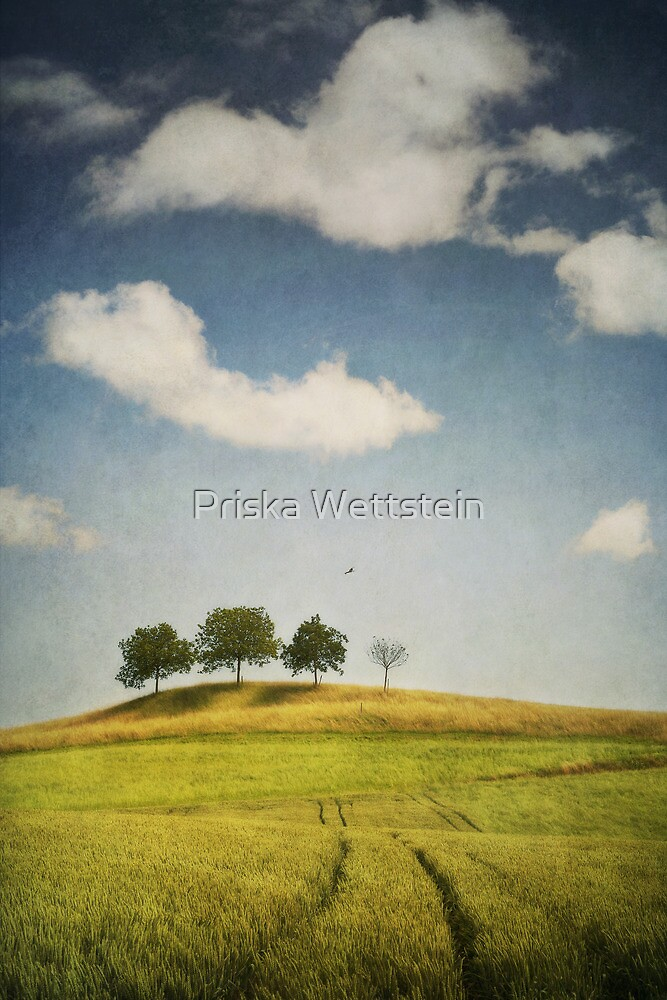 we are 4 by Priska Wettstein
