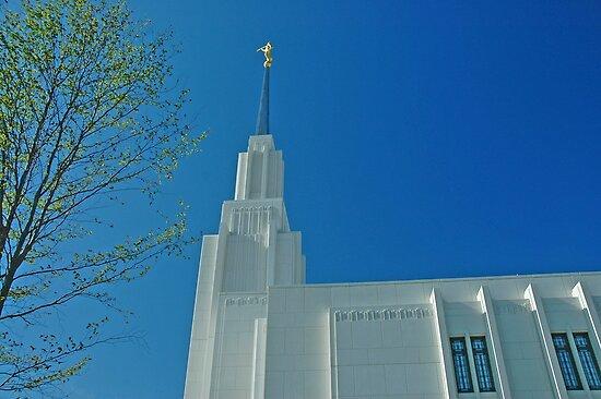 Twin Falls Idaho LDS Temple 2 by Nick Boren