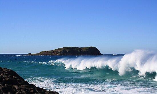 winter surf ... by gail woodbury