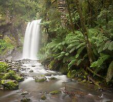 Hopetoun Falls - Great Otway National Park by Timo Balk
