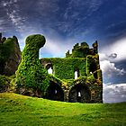 Ballycarberry Castle by Rumtreiber